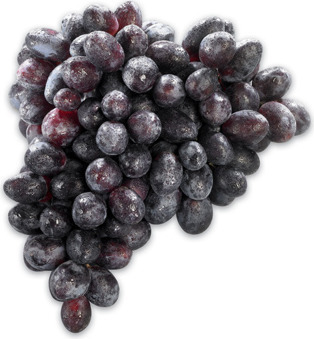 EXTRA LARGE GREEN OR BLACK SEEDLESS GRAPES PRODUCT OF CHILE, No. 1 GRADE EXTRA LARGE RED SEEDLESS GRAPES PRODUCT OF CHILE OR SOUTH AFRICA, No. 1 GRADE 3.73/kg