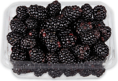 BLACKBERRIES 340 g PRODUCT OF MEXICO ORGANIC RASPBERRIES 170 g, PRODUCT OF MEXICO, No. 1 GRADE