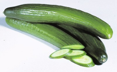SEEDLESS CUCUMBER