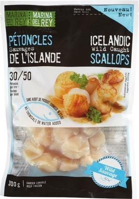 MARINA DEL REY ICELANDIC WILD CAUGHT SCALLOPS