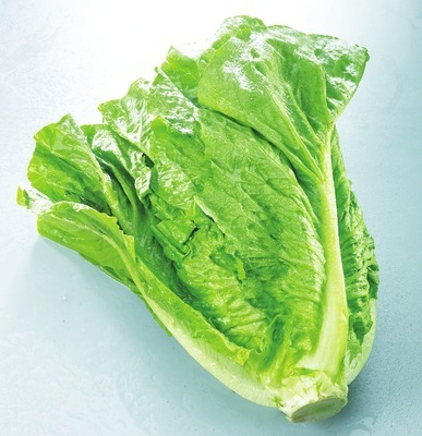 ROMAINE LETTUCE PRODUCT OF CANADA BUNCH RADISHES PRODUCT OF CANADA