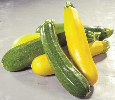 GREEN OR YELLOW ZUCCHINI