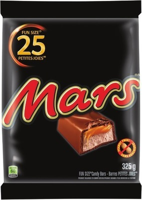 MARS FUN SIZE CHOCOLATE BARS