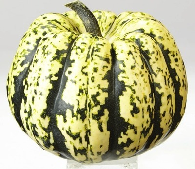 Assorted Ontario Squashes