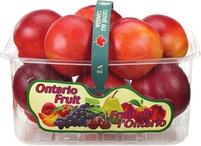 NECTARINES 2 L PRODUCT OF ONTARIO BARTLETT PEARS 2 L PRODUCT OF ONTARIO CANADA FANCY GRADE