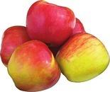 Texas Honeycrisp Apples