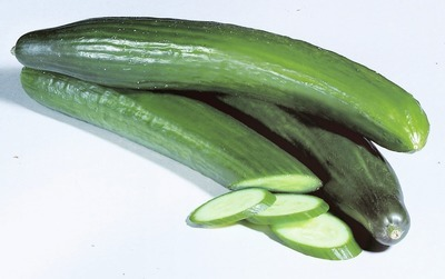SEEDLESS CUCUMBERS or TOMATOES ON THE VINE