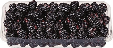 BLACKBERRIES 340 g PRODUCT OF MEXICO CLEMENTINES 2 lb PRODUCT OF SPAIN OR MOROCCO CANARY MELONS PRODUCT OF BRAZIL
