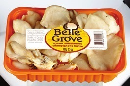 BELLE GROVE OYSTER MUSHROOMS