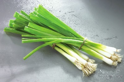 「green oignons」の画像検索結果
