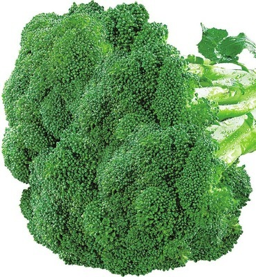 BROCCOLI PRODUCT OF U.S.A. GRAPE TOMATOES 283 g PRODUCT OF MEXICO SWEET NANTES CARROTS 454 g PRODUCT OF MEXICO