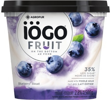 IÖGO OR FRUIT ON THE BOTTOM YOGURT