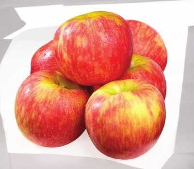 EXTRA LARGE HONEYCRISP APPLES