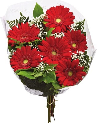 IRRESISTIBLE LARGE GERBERA BOUQUET OR GERBERA UPGRADE